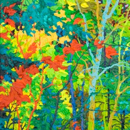 "Autumn Light  - 26"" x 14"""