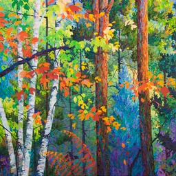 Autumn Maples and Blue Spruce  - 4ft x 4ft
