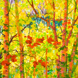 "Balaams Wood - Cherry Birches - 30"" x 36"""