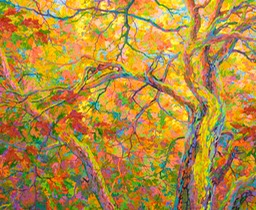 "Balaams Wood Oak Canopy - 56"" x 46"""