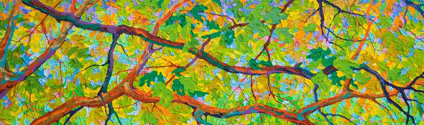 "Balaams Wood Reaching Out - 14"" x 46"""