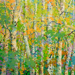 "Flickering Summer Light on Birches - 46"" x 46"""