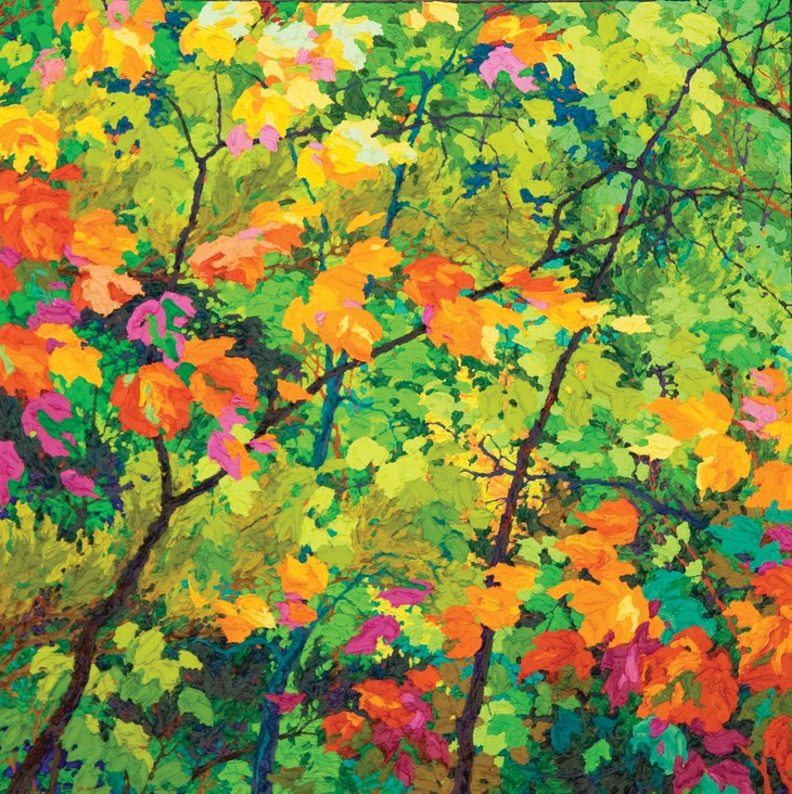 "Floating Maples Autumn Tangle - 36"" x 36"""
