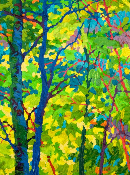 "Gem Aspen Shadows III  - 9"" x 12"""