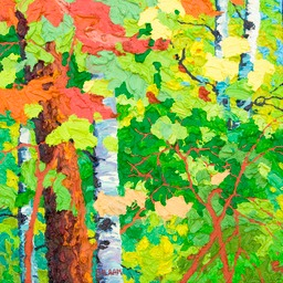 "Glimpse Maples & Birches III - 13"" x 13"""