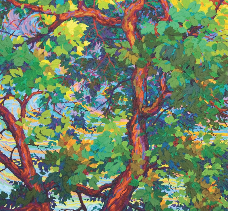 "Majestic Cottonwood - 72"" x 46"""