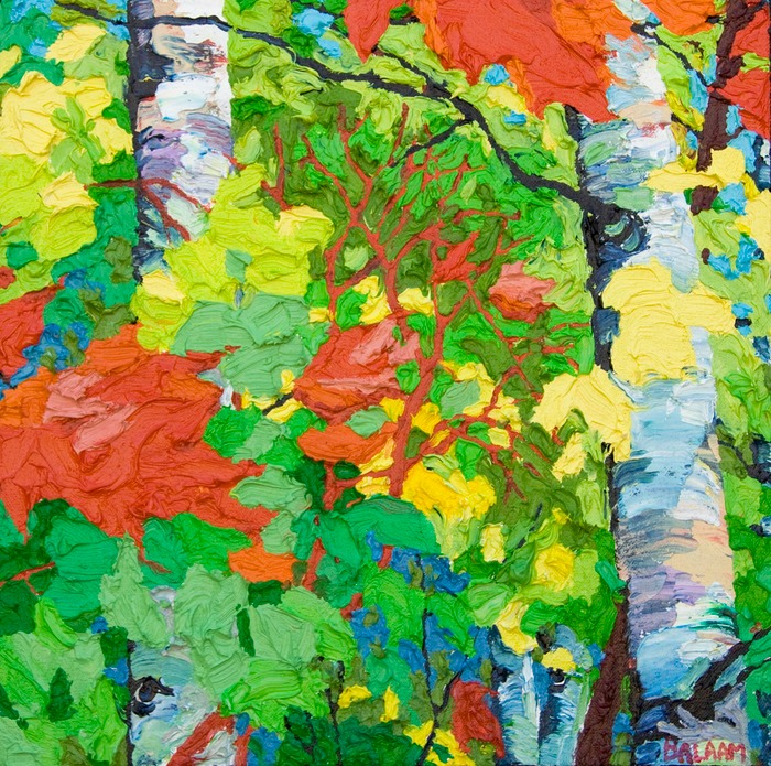 "Maples & Birches IV - 13"" x 13"""