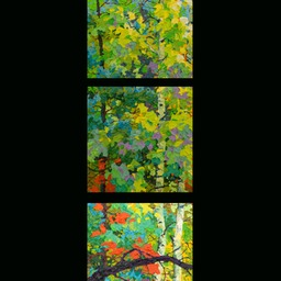 Set of 3 Glimpses - Sunset Through Aspens HI