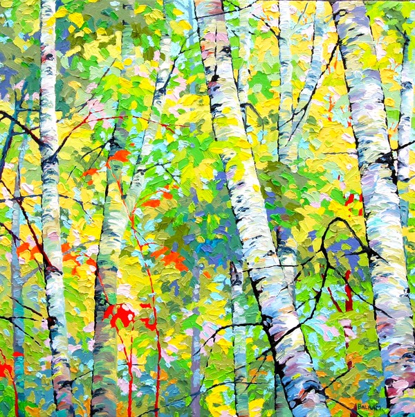 Sping Birches VI - 2ft x 2ft