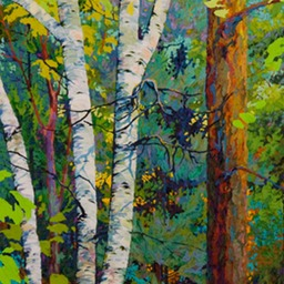 Tall Pine Three Birches - 2ft x 4 ft