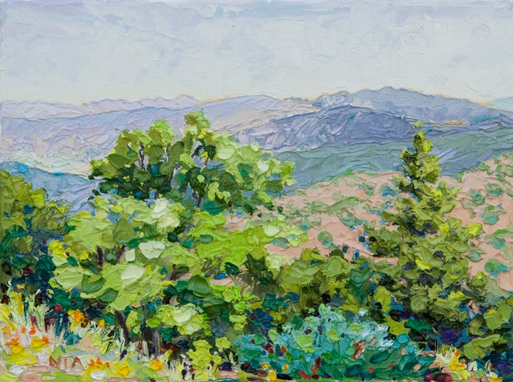"View from Pinal Mountains - 9"" x 12"""