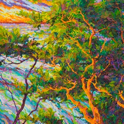 "Pacific Sunset - Ocean Light Through the Trees - 36"" x 36"""